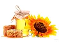 Закупка продуктов пчеловодства